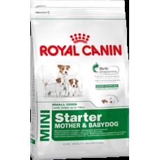 Корм для собак Royal Canin (Роял Канин) Mini Starter (Корм для щенков до 2-ух месяцев, беременных и кормящих собак) 1кг (на развес)